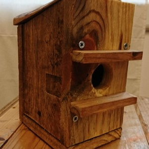 Handmade Dormouse Box